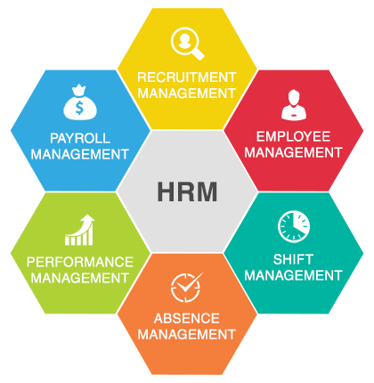 Key Types of HR Systems in Saudi Arabia and How They Help Business