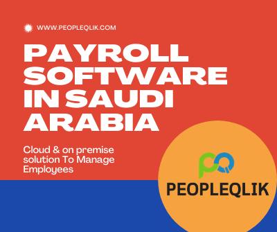 Avoid errors of manual payroll through Payroll Software in Saudi Arabia